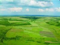 Peste 240.000 ha de terenuri puternic sau moderat acide