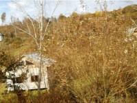 Situl Roşia Montană, acceptat în lista de obiective protejate UNESCO