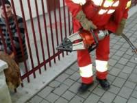 Cu autospeciala de descarcerare ISU pentru salvarea unui căţel prins într-un gard