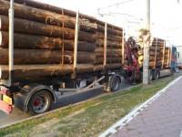 Încă 10 mc de lemn fără acte găsiţi de poliţişti