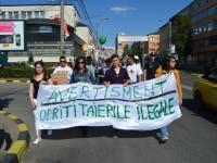 Tăierile abuzive de pădure din România i-au scos în stradă şi pe suceveni