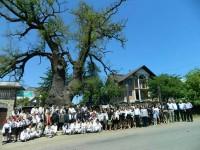 """""""Arborii Ocrotiţi – simbol al vitalităţii, diversităţii şi frumuseţii"""""""