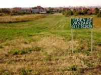 Un hectar de teren agricol a fost vândut în judeţul Suceava cu aproape 150.000 de lei !