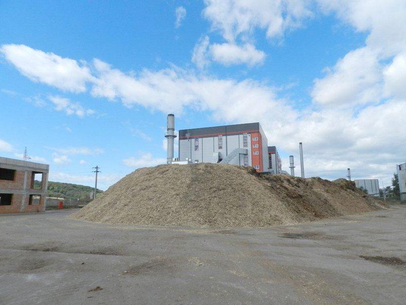 biomasa termo