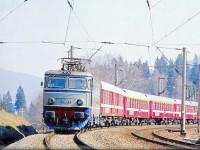 Spulberată de tren