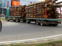 Transportatorii de masă lemnoasă distrug drumurile sucevene