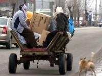 Cei doi viceprimari vor să interzică accesul căruţelor pe domeniul public