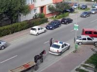 """""""Plagiat"""" la proiectul de hotărâre privind interzicerea căruţelor în Suceava"""
