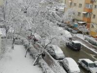 Arbori prăbuşiţi din cauza vântului şi zăpezii au blocat circulaţia feroviară şi cea rutieră