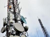 Peste 3,3 milioane de numere de telefon au fost portate în opt ani de la lansarea serviciului