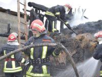 Patru gospodării afectate de un incendiu violent, la Arbore