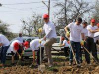Compania E.ON a investit peste 9 milioane euro în proiecte de responsabilitate socială