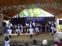 Festivalul salcâmului de la Arbore