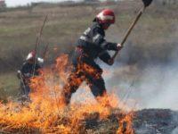Amenzi pentru agricultorii care incendiază miriştile şi pajiştile
