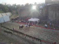 Festivalul Medieval de la Suceava, cel mai mare festival de gen din România, se va internaţionaliza din acest an