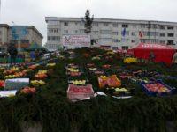 Târgul Mărului şi Festivalul Fanfarelor