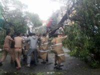 Ciclonul Vardah a lovit sudul Indiei: două victime şi mii de persoane evacuate