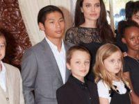 Brad Pitt şi Angelina Jolie au ajuns la un acord privind custodia copiilor