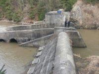 Prefectul şi subprefectul cer curăţarea râului de deşeuri
