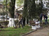 Curăţenie generală în Fălticeni