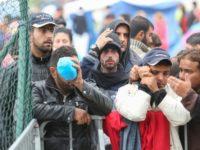 Patru minori refugiaţi, preluaţi de DGASPC Suceava în regim de urgenţă