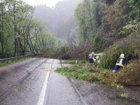 Copaci căzuţi din cauza furtunii au blocat DN 17 între Iacobeni şi Vatra Dornei şi DN 17 B între Crucea şi Broşteni