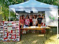 """""""Voluntar pentru Rădăuţi"""" – acţiune inedită organizată în premieră de 10 grupuri de iniţiativă şi asociaţii din Rădăuţi"""