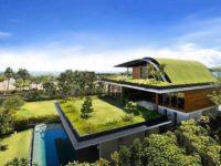 Cătălin Nechifor propune ca grădiniţa din curtea Şcolii Gimnaziale Nr.9 să fie cu acoperiş verde