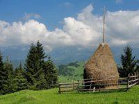 La Poiana Stampei şi Suceviţa, oficii de dezvoltare montană