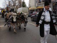 """Spectacolul """"Datini şi obiceiuri în Bucovina"""" de la Câmpulung Moldovenesc"""