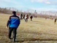 Copilaş de 2 ani, mort de frig în pădure, la Vicovu de Sus