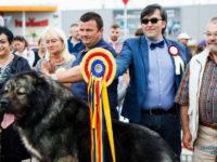 """""""Bucovina Dog Show 2019"""""""