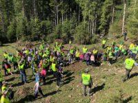 Zeci de copii au lăsat tabletele din mâini şi au participat la o acţiune voluntară de împădurire