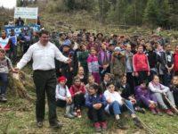Sute de persoane au pus umărul la împădurirea câtorva hectare de teren la Stulpicani
