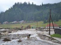 Inundaţiile au afectat 13 drumuri judeţene, patru poduri şi 27 de podeţe