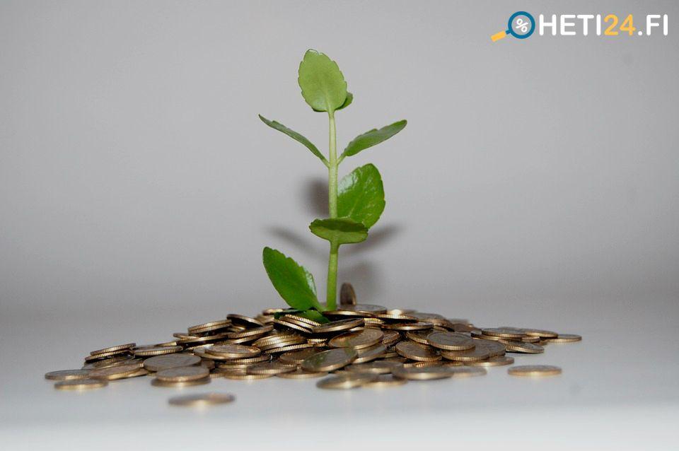 Cum să câștigi bani oferte webmoney. Cum să câștigi bani pe WebMoney