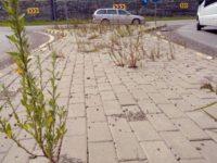 Drum cu patru benzi până la Stroieşti, cu separarea sensurilor de mers