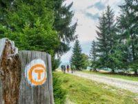 Drumul Via Transilvanica va fi inaugurat în 22 iulie, la Mănăstirea Putna