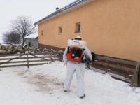 Intervenţie la apariţia pestei rumegătoarelor mici, într-o fermă cu 220 de oi