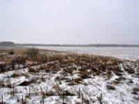 Zăpadă salvatoare, după luni întregi de secetă