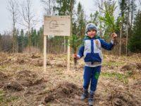 """Prima sesiune de plantare cu voluntari din acest an a proiectului """"Pădurea de Mâine"""""""