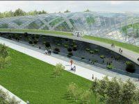 Prima construcţie din campusul universitar 2 va fi o grădiniţă