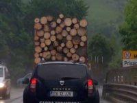 Un echipaj al Gărzii Forestiere Suceava a fost acuzat că ar fi escortat un transport ilegal de lemn