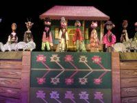 """Festivalul Internaţional de Teatru pentru Tineret """"Grigore Vasiliu Birlic"""""""