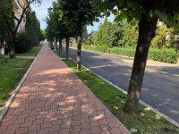 Ritmul lucrărilor de modernizare a străzilor şi trotuarelor este susţinut şi se deschid noi şantiere pe măsură ce se finalizează altele