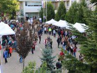 """""""Noaptea cercetătorilor europeni"""" a reunit, la Suceava, peste 2500 de participanţi"""