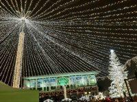 S-au aprins luminile de sărbători şi s-a deschis Târgul de Crăciun