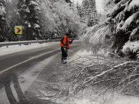 Comitetul pentru Situaţii de Urgenţă a stabilit măsurile ce trebuie adoptate în condiţii de ninsori şi viscol