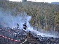 Aproximativ 200 de pompieri au fost antrenaţi într-o intervenţie deosebit de complicată pentru a lichida şase incendii de vegetaţie care au ameninţat fondurile forestiere din zonele de munte