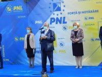 """Primarul Ion Lungu şi-a făcut """"descărcarea de gestiune"""" pentru mandatul 2016-2020"""
